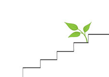 Icon. Colored icons depicting the stairs and leaves in  white background Stock Images