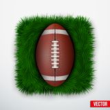 Icon american football ball in green grass. Vector. Royalty Free Stock Photos