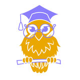 Icon back to school owl Stock Images