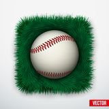 Icon Baseball ball in green grass. Vector. Stock Images