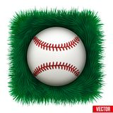 Icon Baseball ball in green grass. Vector Stock Photography