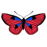 Icon beautiful butterfly pattern for decoration. vector illustra Stock Images