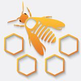 Icon bee and honeycomb Stock Photos