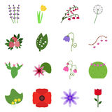 Icon blossom. Vector flowering.flower Royalty Free Stock Photos