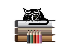 Icon book. Books, pencils and a black cat on a white background Royalty Free Stock Photography