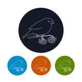 Icon of a Bullfinch Royalty Free Stock Photo