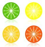 Icon a citrus Stock Image
