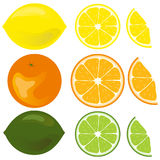 Icon citrus. Flat design, illustration royalty free illustration