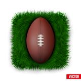 Icon Classic rugby ball on green grass. Vector. Royalty Free Stock Photo