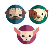 Icon collection of dogs Royalty Free Stock Photo
