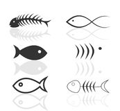 Icon of fish4 Stock Photos