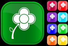Icon of flower. On shiny square buttons Royalty Free Illustration