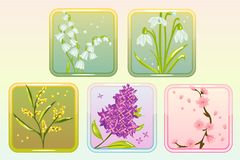 Icon Flower Set with Lilac, Lily, Snowdrop, Sakura and Mimosa. Vector Spring flower set with lilac, lily of the valey, snowdrop, sakura and mimosa. Perfect for Royalty Free Stock Image