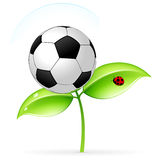 Icon with football Stock Photography