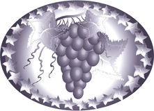Icon with grape Stock Images