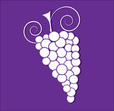 Icon of grape Stock Photos