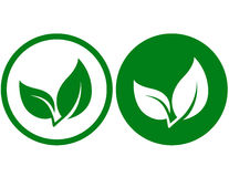 Icon with green leaf Stock Photography