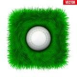 Icon Hockey ball on green grass. Stock Photos