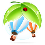 Icon with Hot Air Balloon Royalty Free Stock Photo