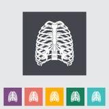 Icon of human thorax. Royalty Free Stock Photos