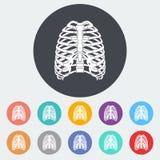 Icon of human thorax. Stock Photo