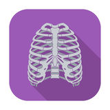 Icon of human thorax. Royalty Free Stock Photography