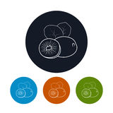 Icon  Kiwifruit in the Contours. Icon Kiwifruit ,the Four Types of Colorful Round Icons Kiwi in the Contours, Vector Illustration Royalty Free Stock Photo