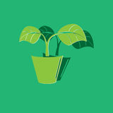 icon leaf symbol. Plant in flower pot icon on gray background with round shadow. Vector illustration Royalty Free Stock Photo