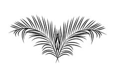 Palm Sunday leaves. Icon for leaves used for Palm Sunday mostly by Catholics Royalty Free Stock Photo