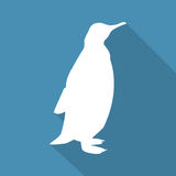 Icon penguin on a blue background in a flat design. Vector illustration Stock Photos