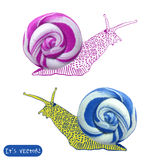 Icon of plasticine snail Royalty Free Stock Photos