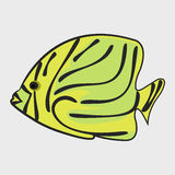 Icon reef fish. Icon reef fish isolated on white background Stock Photos