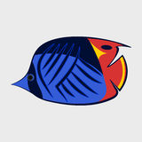 Icon reef fish. Icon reef fish  on white background Stock Photos