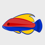 Icon reef fish. Icon reef fish  on white background Stock Photography