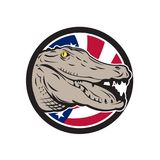 American Alligator USA Flag Icon. Icon retro style illustration of an American alligator, crocodilian of the family Alligatoridae with United States of America Royalty Free Stock Image