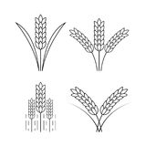Icon rice, vector Stock Images