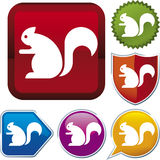 Icon series: squirrel Stock Photography