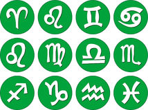 Zodiac signs vector illustration