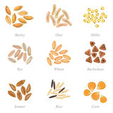 Icon set of cereal grains part 3 Royalty Free Stock Image