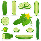 Icon Set Cucumber Stock Photo
