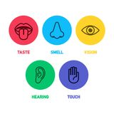 Icon set of five human senses Royalty Free Stock Images