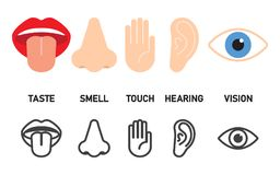Icon set of five human senses. Touch, smell, hearing, vision, taste Vector illustration royalty free illustration