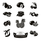 Icon set of fruits and berries Royalty Free Stock Images