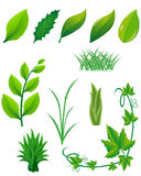 Icon set of green leaves and plants for design Royalty Free Stock Photos