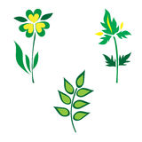 Icon set of green leaves and plants, vector illustration Stock Photography