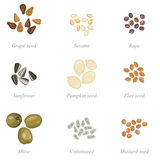 Icon set of oilseeds and oil fruits Stock Photo