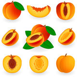 Icon Set Peach Stock Image