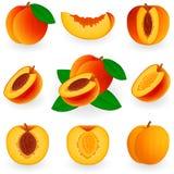 Icon Set Peach Stock Image