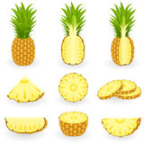 Icon Set Pineapple Stock Photos