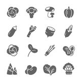 Icon set - vegetable Royalty Free Stock Photography